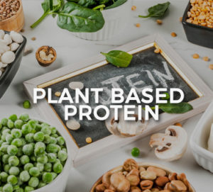 healthy plant based protein cape town south africa